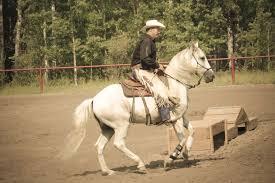 California Flag Horse Welcome The Horse Ranch Natural Horsemanship