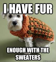 Sweater Meme - meme sweaters 28 images redneck turtle sweater by recyclebin
