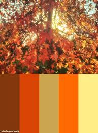 Autumn Color Schemes 73 Best Color Schemes Images On Pinterest Color Palettes Color