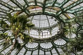 Garden Glass Art Free Images Tree Architecture Window Canopy Palm Facade
