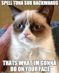 Tuna Sub Meme - grumpy cat meme imgflip
