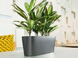 window planters indoor indoor window planters sougi me