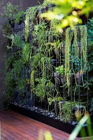 green wall system diagram internal detail details plant autocad