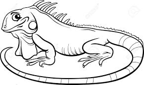 best iguana clipart 14000 clipartion com