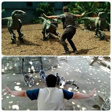 Raptor Memes - zookeepers are recreating chris pratt s moves in jurassic world