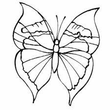 drawing butterfly for kids simple butterfly drawing butterfly