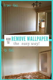 Zinsser Adhesive Remover by Best 25 Removing Wallpaper Borders Ideas On Pinterest Wallpaper