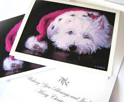westie christmas cards west highland terrier available from oil