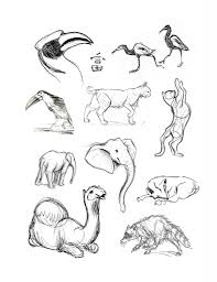 animal pictures for drawing pencil drawings animals pencil sketch
