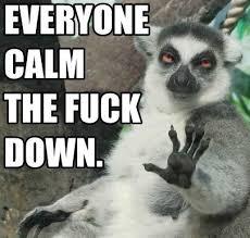Calm The Fuck Down Meme - everybody calm the fuck down viral viral videos
