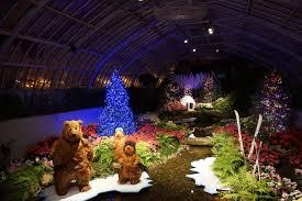 phipps conservatory christmas lights winter light garden and flower show at phipps conservatory ruth e