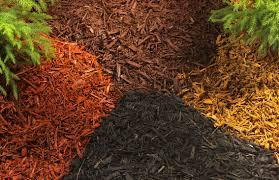 What Type Of Soil To Use For Vegetable Garden The Dirt On Dirt Potting Soil Proven Winners