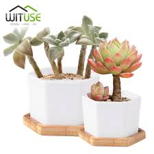 compare prices on ceramic pots planters online shopping buy low