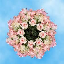 bulk roses bulk pastel roses global