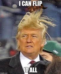 Flips Hair Meme - donald trumph hair latest memes imgflip