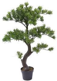 fiberglass garden landscaping artificial podocarpus bonsai tree