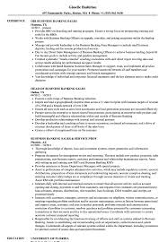 resume template financial accountants definition of terrorism banking sales resume sles velvet jobs