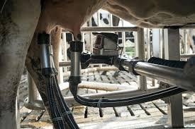 chambre d agriculture finist e agriculture les robots veillent au gain libération