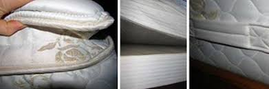 bed bugs pillows bed bug inspection process bed bugs pest management topics ehs