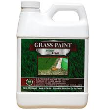 envirocolor 1 000 sq ft 4 ever green grass colorant concentrate
