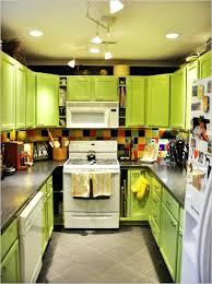 Stainless Steel Kitchen Lights Awe Inspiring Green Kitchen Appliances White Colored Kitchen