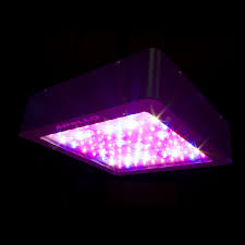 most efficient grow light led the most efficient way of growing cannabis indoors at http
