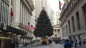 new york city december 2015 a tree stands in