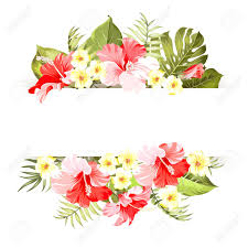 Text For Invitation Card Tropical Flower Frame With Place For Invitation Card Text Happy