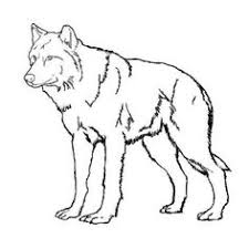 Realistic Wolf Coloring Pages Free Printable Wolf Coloring Pages Wolf Pack Coloring Pages