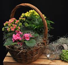 small wicker basket with flowering plants in suffern ny