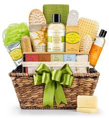 basket gifts organic spa basket