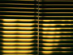 white window blinds free stock photo