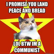 Meme Land - i promise you land peace cat meme cat planet cat planet