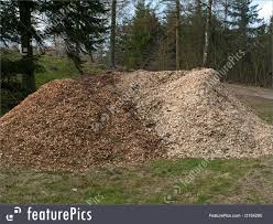 agriculture and forestry piles of wood chips mulch stock image