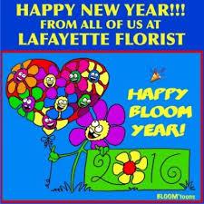 lafayette florist lafayette florist laf florist