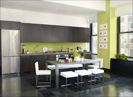 kitchen fabulous color schemes for kitchens with dark cabinets