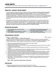 cio resume cio resume examples cio sample resume chief information officer