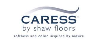 discount caress carpet by shaw in scottsdale az carpet closeouts