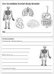 human bodyworksheets