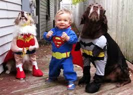 Animal Halloween Costumes 10 Adorable Pets Halloween Costumes U2013 Modernmom