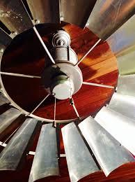 rooster ceiling fan 561