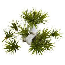 1 dozen 6 inch indoor silk mini spiky agave succulent plants