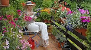 topfpflanzen balkon pflegeleichte pflanzen für balkon und terrasse gvb hausinfo