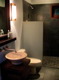 walk in showers without doors all the baths had these great walk