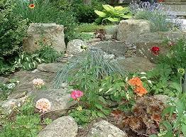 30 best shade u0026 rock gardens images on pinterest gardening