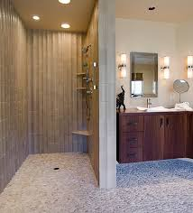 Bathroom Stalls Without Doors Custom Glass Doors Tile Designs Wheelchair Accessible Showers