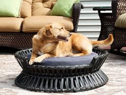 Igloo Dog Bed Iconic Pet Rattan Raised Arc Dog Bed Wayfair