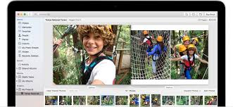 Picture Albums Organize And Find Your Photos Apple Support
