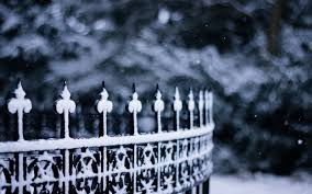 winter snowflakes fence wallpaper 2560x1600 32514