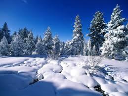 encyclopedia natural aesthetic snow wallpaper 49677 dongxue